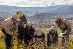 La Paz, Bolivia finishes in second place in City Nature Challenge